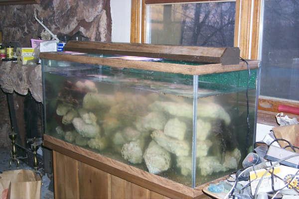 Diy 75 gallon tank divider diy do it your self for Fish tank divider 75 gallon
